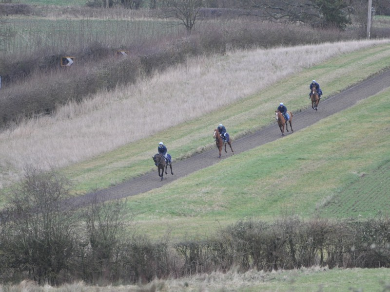All-weather hill gallop