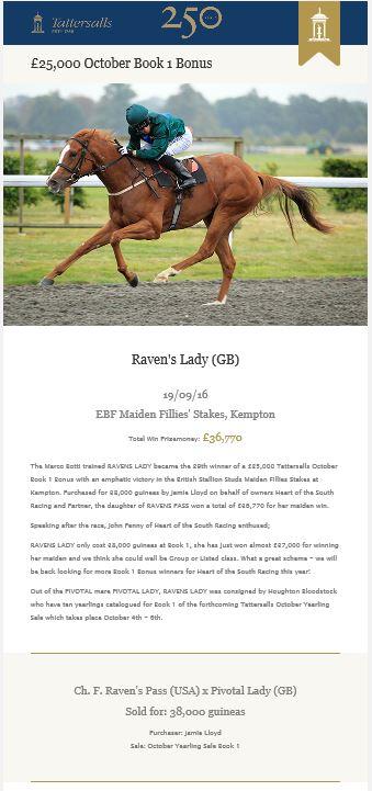 ravens-lady